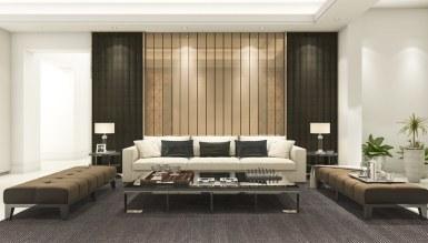 - Ficus Salon Dekorasyonu