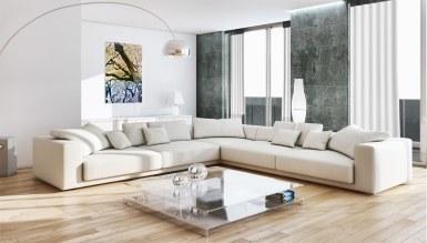 - Neo Salon Dekorasyonu