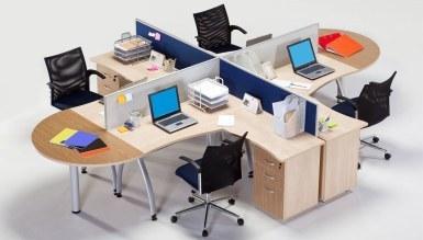 Surmal Ofis Dekorasyonu